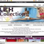Flex Collection Register Form