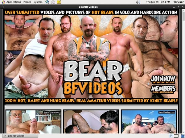 Bear BF Videos Site Discount